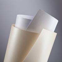 Dekoratyvinis kartonas su perlamutru